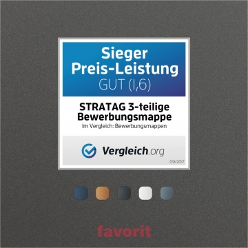 Bewerbungsmappe favorit© 3-teilig Metallic-Design